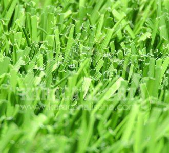 55 mm Ultra lion grass